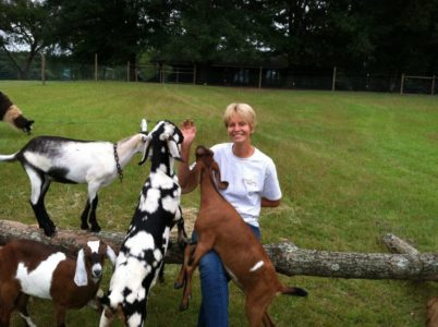 Evelyn and Goats sitting on a wooden playground in the meadow.
